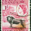 KENYA UGANDA TANGANYIKA - CIRCA 1954: A stamp printed in Kenya Uganda Tanganyika shows a lion and Queen Elizabeth II, circa 1954. — Stock Photo