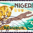 NIGERIA - CIRCA 1965: A stamp printed in Nigeria shows a Cheetah (Acinonyx jubatus), circa 1965.  — Stock Photo