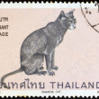 "THAILAND - CIRCA 1970: A stamp printed in Thailand from the ""Siamese cats"" issue shows Blue point Siamese cat, circa 1970. — Stock Photo"