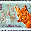 "ROMANIA - CIRCA 1961: A stamp printed in Romania from the ""Forest Animals"" issue shows a Red fox, circa 1961. — Stock Photo"