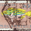 "MOZAMBIQUE - CIRCA 1951: A stamp printed in Mozambique from the ""Fishes"" issue shows bluestripe snapper (Lutjanus kasmira), circa 1951. — Stock Photo"