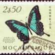 "MOZAMBIQUE - CIRCA 1953: A stamp printed in Mozambique from the ""Butterflies and Moths"" issue shows a Green swallowtail (Papilio phorcas ansorgei) butterfly, circa 1953. — Stock Photo"