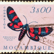 "MOZAMBIQUE - CIRCA 1953: A stamp printed in Mozambique from the ""Butterflies and Moths"" issue shows an Arniocera ericata moth, circa 1953. — Stock Photo"