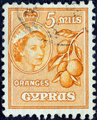 CYPRUS - CIRCA 1955: A stamp printed in Cyprus shows oranges and Queen Elizabeth II, circa 1955. — Stock Photo
