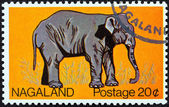 NAGALAND STATE - CIRCA 1969: A stamp printed in India shows an Elephant, circa 1969. — Foto Stock