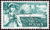 "POLAND - CIRCA 1956: A stamp printed in Poland from the ""Merchant Navy"" issue shows merchant navy officer and Kilinski (freighter), circa 1956. — Stock Photo"
