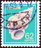 JAPAN - CIRCA 1980: A stamp printed in Japan shows precious Wentletrap perf or imperf (self-adhesive), circa 1980. — Stock Photo
