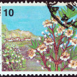 "Stock fotografie: GREECE - CIRC1989: stamp printed in Greece from ""Wild Flowers"" issue shows common myrtle (Myrtus communis), circ1989."