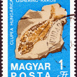 "HUNGARY - CIRCA 1969: A stamp printed in Hungary from the ""Centenary of Hungarian Geological Institute. Minerals and Fossils"" issue shows Hungarian herring (fossilized fish), circa 1969. — Stock Photo"