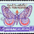"Stock fotografie: DUBAI EMIRATE - CIRC1963: stamp printed in United Arab Emirates from ""Centenary of Red Cross"" issue shows March moth, circ1963."