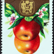 "POLAND - CIRCA 1974: A stamp printed in Poland from the ""19th International Horticultural Congress, Warsaw. Fruits, Vegetables and Flowers"" issue shows Apples, circa 1974. — Stock Photo"