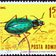 "Stock Photo: ROMANI- CIRC1964: stamp printed in Romanifrom ""Insects"" issue shows Carabus fabricii malachiticus (ground beetle), circ1964."