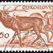 "CZECHOSLOVAKI- CIRC1959: stamp printed in Czechoslovakifrom ""10th anniversary of TatrNational Park"" issue shows Red deers (Cervus elaphus), circ1959. — Stock Photo #28172251"