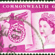 UNITED KINGDOM - CIRCA 1958: A stamp printed in United Kingdom issued for the 6th British Empire and Commonwealth Games, Cardiff shows Queen Elizabeth II, Flag and Games emblem, circa 1958. — Stock Photo