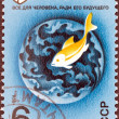 "USSR - CIRCA 1974: A stamp printed in USSR from the ""EXPO 74 World Fair, Spokane, U.S.A"" issue shows Preserve the Environment. Fish and globe (The Sea), circa 1974. — Stock Photo #31273683"