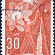 "图库照片: CZECHOSLOVAKI- CIRC1962: stamp printed in Czechoslovakifrom ""Space Research (2nd series)"" issue shows mconquers space, circ1962."