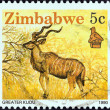 "Stock Photo: ZIMBABWE - CIRC1990: stamp printed in Zimbabwe from ""Wildlife"" issue shows Greater kudu, circ1990."