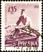 """POLAND - CIRCA 1955: A stamp printed in Poland from the """"2nd International Games"""" issue shows sculling, circa 1955. — Stock Photo"""