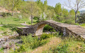 Agios Minas traditional stone bridge, Epirus, Greece — Stock Photo