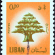 Stock Photo: LEBANON - CIRC1974: stamp printed in Lebanon shows Cedar of Lebanon, circ1974.