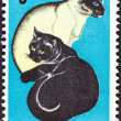 Stock Photo: SOUTH AFRIC- CIRC1972: stamp printed in South Africissued for Centenary of Societies for Prevention of Cruelty to Animals shows Black and Siamese Cats, circ1972.