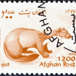 AFGHANISTAN - CIRCA 1998: A stamp printed in Afghanistan from the Wildlife issue shows a Beech marten (Martes foina), circa 1998.  — Stock Photo