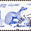 AFGHANISTAN - CIRCA 1998: A stamp printed in Afghanistan from the Wildlife issue shows a European pine marten (Martes martes), circa 1998.  — Stock Photo
