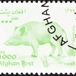 "Stock Photo: AFGHANISTAN - CIRC1998: stamp printed in Afghanistfrom ""Wildlife"" issue shows Wild boar (Sus scrofa), circ1998."