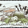 "FINLAND - CIRC1981: stamp printed in Finland from ""National Parks"" issue shows Razorbills, Eastern Gulf National Park, circ1981. — Stock Photo #33988187"