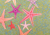 Sea stars on colorful sand — Stock Photo