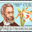 "CUBA - CIRCA 1989: A stamp printed in Cuba from the ""Latin American History (4th series)"" issue shows Machado de Assis and Laelia grandis (Brazil), circa 1989. — Stock Photo"