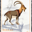 GREECE - CIRCA 1970: A stamp printed in Greece from the Nature Conservation Year issue shows a Cretan Wild Goat (Capra aegagrus cretensis), circa 1970.  — Stock Photo