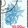 MOZAMBIQUE - CIRCA 1981: A stamp printed in Mozambique from the Agricultural Resources issue shows Castor oil plant, circa 1981. — Stock Photo