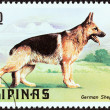 "PHILIPPINES - CIRCA 1979: A stamp printed in Philippines from the ""Cats and Dogs "" issue shows a German Shepherd, circa 1979. — Stock Photo #35895679"