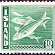 ICELAND - CIRCA 1939: A stamp printed in Iceland shows Atlantic herring (Clupea harengus) fish, circa 1939. — Stock Photo