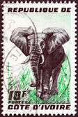 IVORY COAST - CIRCA 1959: A stamp printed in Ivory Coast shows an Elephant, circa 1959. — Стоковое фото