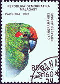 """MADAGASCAR - CIRCA 1992: A stamp printed in Madagascar from the """"Birds"""" issue shows a Red-crowned Parakeet (Cyanoramphus novaezelandiae), circa 1992. — Stock Photo"""