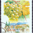 "Stock Photo: HUNGARY - CIRC1990: stamp printed in Hungary from ""Wine Grapes and Regions (1st series)"" issue shows Leanyka, Eger, circ1990."
