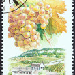 "Stock Photo: HUNGARY - CIRC1990: stamp printed in Hungary from ""Wine Grapes and Regions (1st series)"" issue shows Riesling, Badacsony, circ1990."