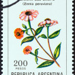 "ARGENTINA - CIRCA 1982: A stamp printed in Argentina from the ""Flowers "" issue shows Peruvian Zinnia (Zinnia peruviana), circa 1982. — Stock Photo"