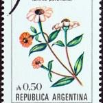 "ARGENTINA - CIRCA 1985: A stamp printed in Argentina from the ""Flowers "" issue shows Peruvian Zinnia (Zinnia peruviana), circa 1985. — Stock Photo"