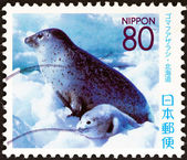"JAPAN - CIRCA 2007: A stamp printed in Japan from the ""Prefectural Stamps - Hokkaido. Northern Animals "" issue shows Spotted Seal (Phoca largha), circa 2007. — Stock Photo"