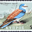 "CYPRUS - CIRCA 1969: A stamp printed in Cyprus from the ""Birds of Cyprus "" issue shows European Roller (Coracias garrulus), circa 1969. — Stock Photo"