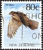 """Nova zelândia - por volta de 1988: um selo imprimido na nova zelândia, da edição de """"pássaros nativos"""" mostra uma nova zelândia falcon (falco novaeseelandiae), por volta de 1988. — Fotografia Stock"""