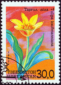 "UZBEKISTAN - CIRCA 1993: A stamp printed in Uzbekistan from the ""Flowers "" issue shows Tulipa kaufmanniana, circa 1993. — Stock Photo"