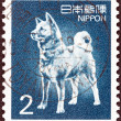 JAPAN - CIRCA 1980: A stamp printed in Japan shows Akita dog, circa 1980. — Stock Photo