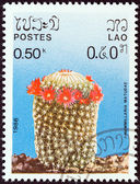 "LAOS - CIRCA 1986: A stamp printed in Laos from the ""Cacti"" issue shows Mammillaria matudae, circa 1986. — Stock Photo"