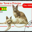 "SAO TOME AND PRINCIPE - CIRCA 2004: A stamp printed in Sao Tome and Principe from the ""Cats "" issue shows Russian Blue, circa 2004. — Stock Photo #44249781"