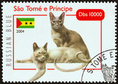 "SAO TOME AND PRINCIPE - CIRCA 2004: A stamp printed in Sao Tome and Principe from the ""Cats "" issue shows Russian Blue, circa 2004. — Stock Photo"
