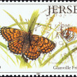 "JERSEY - CIRCA 1991: A stamp printed in United Kingdom from the ""Butterflies and Moths"" issue shows Glanville Fritillary butterfly (Melitaea cinxia), circa 1991. — Stock Photo"